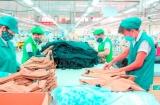 BHXH Ninh Thuận: Chủ động hỗ trợ người lao động gặp khó khăn do đại dịch Covid-19
