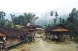 Quảng Ngãi: Nỗ lực giảm nghèo vùng đồng bào dân tộc thiểu số