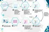 Vimedimex chính thức được Bộ Y tế phê duyệt nhập khẩu phân phối 30 triệu liều vaccine Covid-19 Hayat-Vax sản xuất tại UAE về Việt Nam