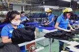 7.755 lao động ở Tuyên Quang đã được nhận tiền hỗ trợ theo Nghị quyết 116/NQ-CP