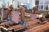 Lào Cai giải quyết việc làm cho 10.322 lao động