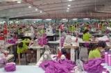 Gần 67.000 lao động ở Thái Bình được nhận hỗ trợ của Chính phủ