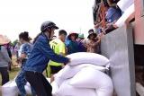 Quảng Trị: Phân bổ gạo hỗ trợ trong thời gian giáp hạt cho người dân