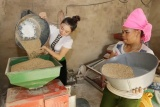 Vietnam's multidimensional poverty rate dropping