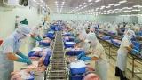 Cần Thơ giải quyết việc làm cho người lao động trong bối cảnh dịch bệnh Covid-19