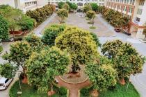 Trường Cao đẳng nghề Công nghệ cao Hà Nội: Đổi mới chất lượng đào tạo song hành cùng phát triển môi trường thân thiện