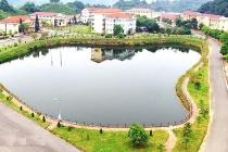 Trường Cao đẳng Lào Cai: Tích cực bảo vệ môi trường và gắn kết giáo dục nghề nghiệp