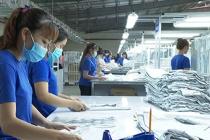 Tây Ninh còn khoảng 26.680 lao động làm việc trong các doanh nghiệp