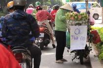 Đắk Nông: Tập trung triển khai thực hiện Nghị quyết 68 của Chính phủ