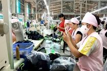 Phát triển thị trường lao động ở Tuyên Quang