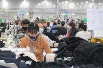 Phú Thọ tập trung thực hiện chính sách lao động – việc làm - tiền lương