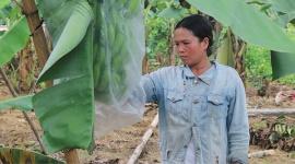 Thừa Thiên Huế: Giảm nghèo trên vùng đất khó