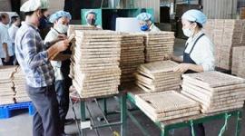 40.769 lao động trong khu công nghiệp ở Vĩnh Long phải tạm ngưng làm việc