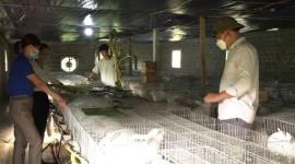 Nam Định: Nỗ lực giúp người dân thoát nghèo bền vững