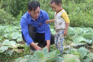 Thanh niên 9X giúp bà con thoát nghèo nhờ trồng rau trái vụ